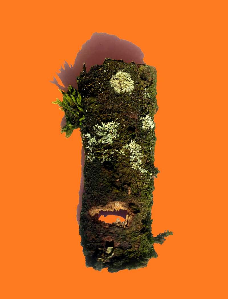 Orange-Sondergrösse