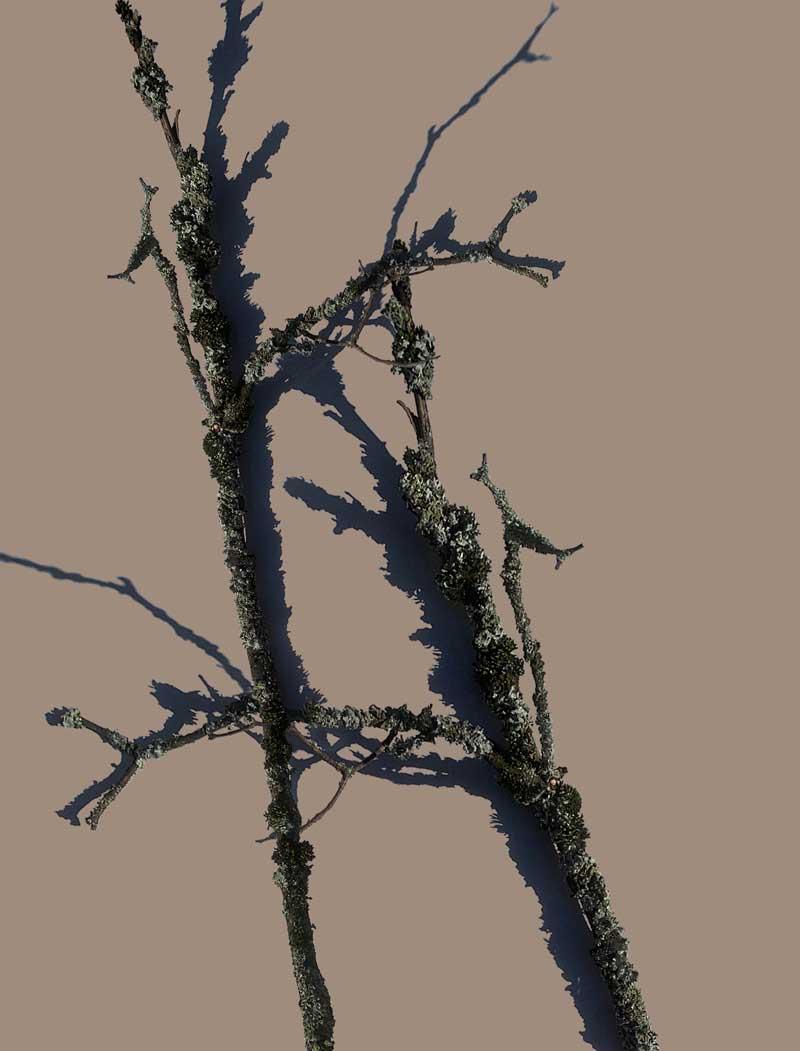 Schnur-Sondergrösse